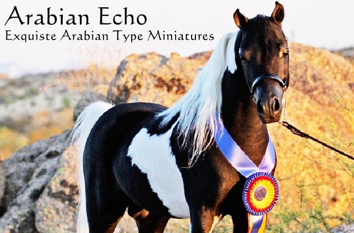 Arabian Echo Home